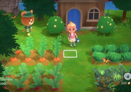 Hokko-Life-farm-1.jpg