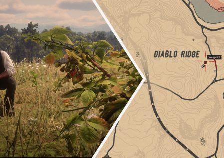 Red-Dead-Redemption-2-Blackberry-Location.jpg