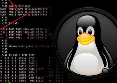 1619707050_linux.jpg