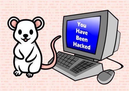 1619714304_hackers.jpg
