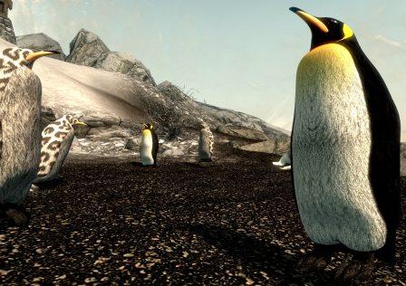 Skyrim_Penguins.jpeg