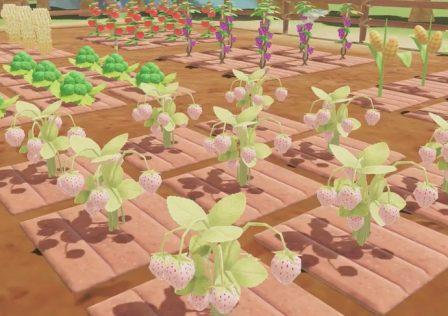 A-new-leaf-memories-farm.jpg