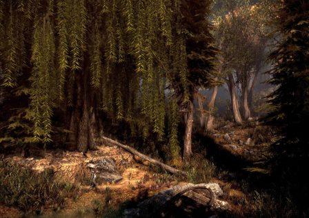 fallout_4_forest_mod.jpg