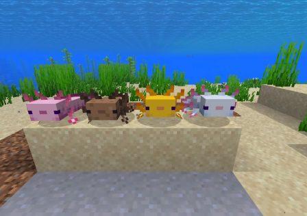 minecraft-snapshot-20w51a-axolotl.jpg
