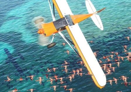 flight-simulator-will-support-30fps-cross-save-and-cross-play-on-xbox-series-x-s-1623694983241.jpg