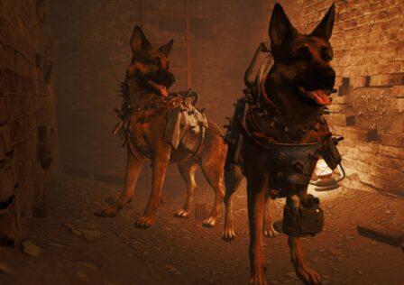 dogmeat-companion.jpg