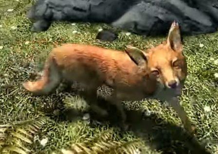 skyrims-myth-of-the-treasure-fox-finally-explained-1629367724516.jpg